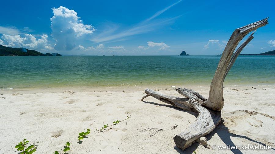 Strand mit Baumstumm im Vordergrund
